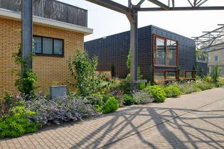 RAG building, green houses, plants and flowers (48 Bilder)